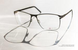 Eine Brillenfassung von Meyer Brillen